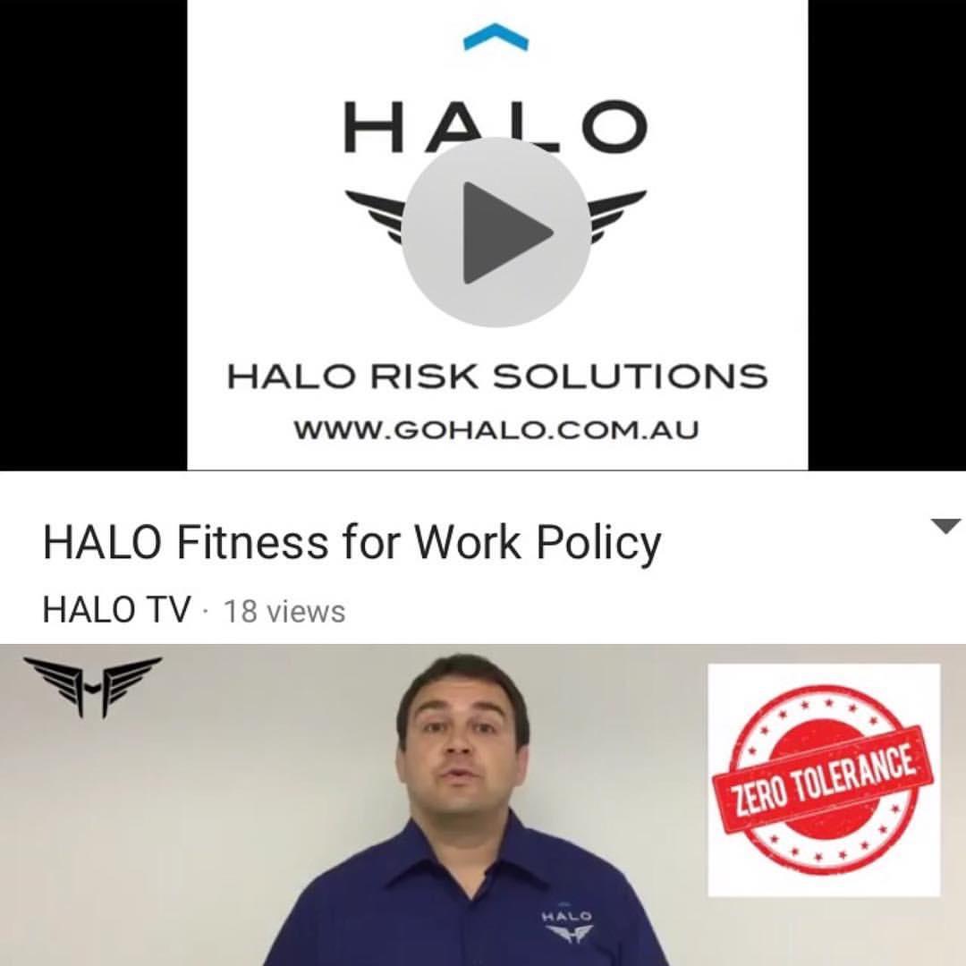 HALO TV